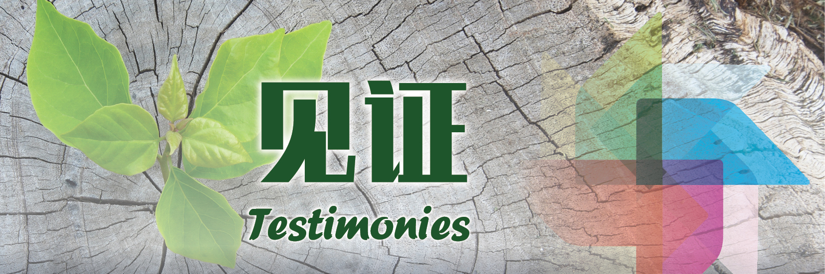testimony banner